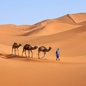 Excursión De 4 Días De Marrakech A Fez Via Merzouga
