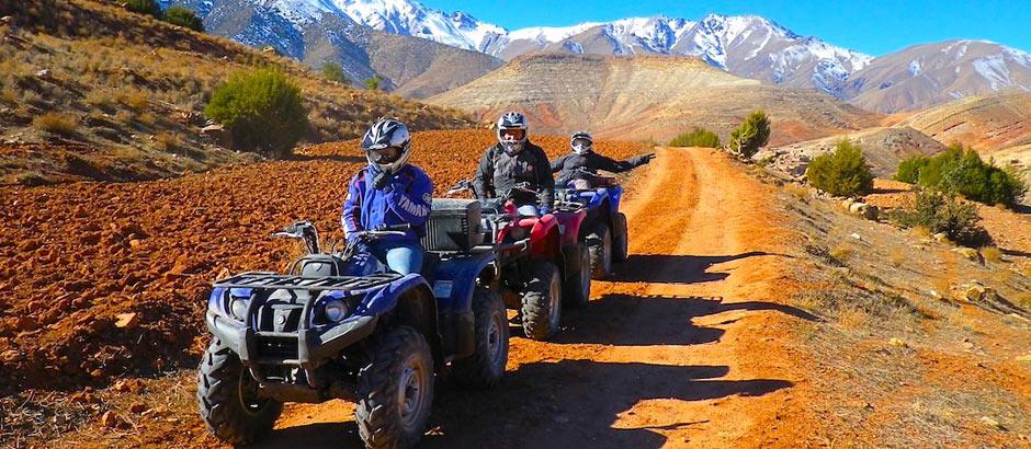 Tour en buggy por el palmeral
